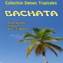 dvd cours bachata
